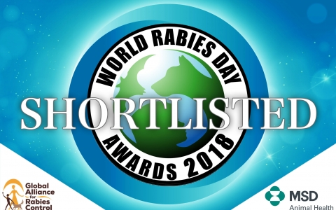 Celebrating rabies champions across the world