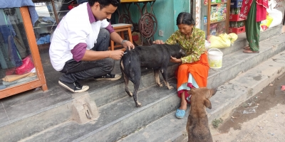 Working towards a rabies-free Nepal