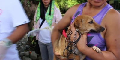 Journey Towards a Rabies Free Philippines