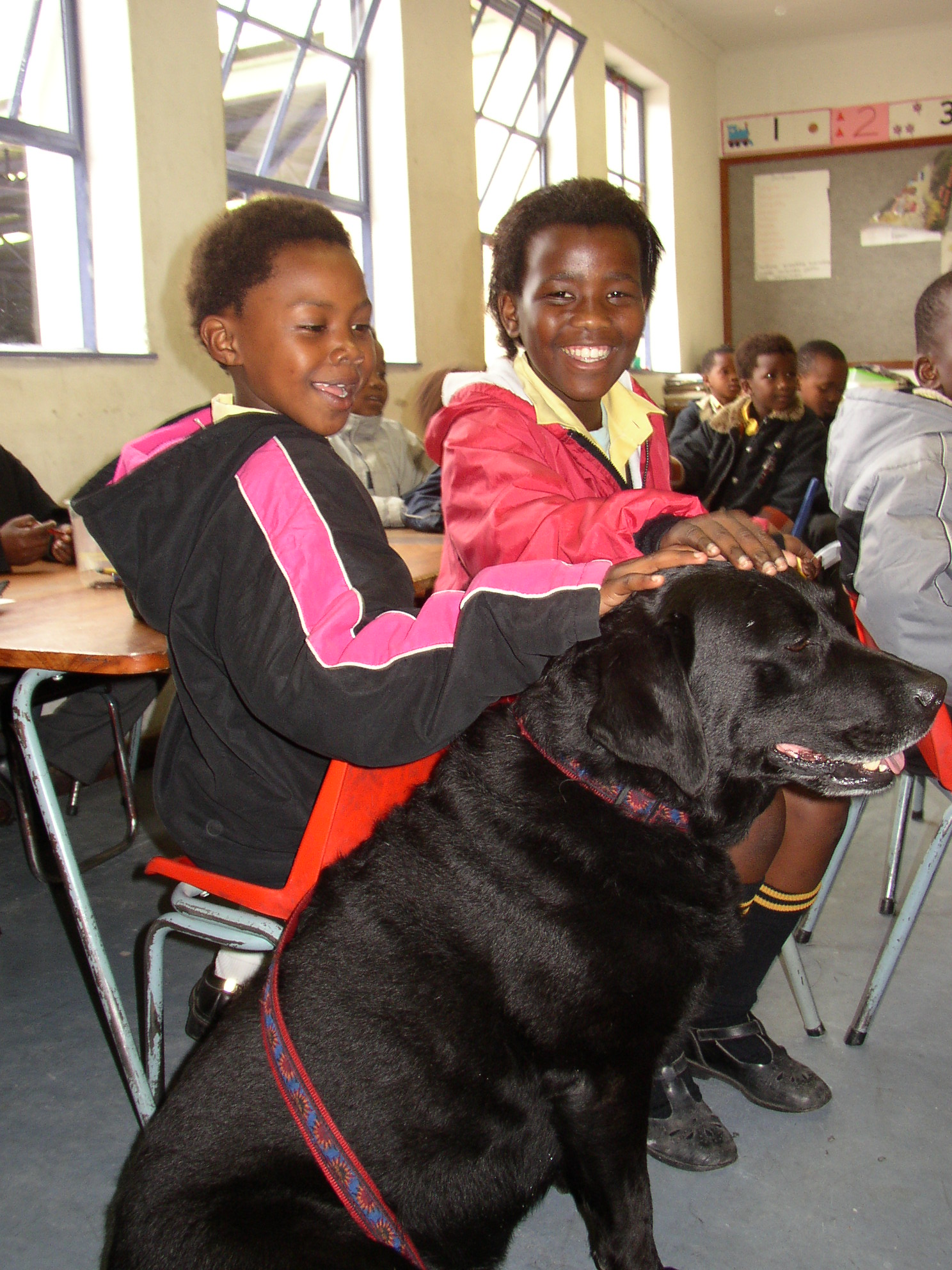 Girls and dog. Humane Education Trust, 5 freedoms lesson plans rabies. End Rabies Now